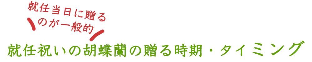 就任祝いの胡蝶蘭の贈る時期・タイミング